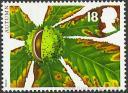 Castaño de Indias (Aesculus hippocastanum).