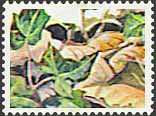 El sello oculto. (II)