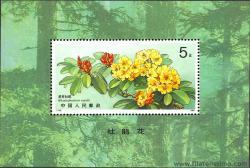 Flora. Rododendro.