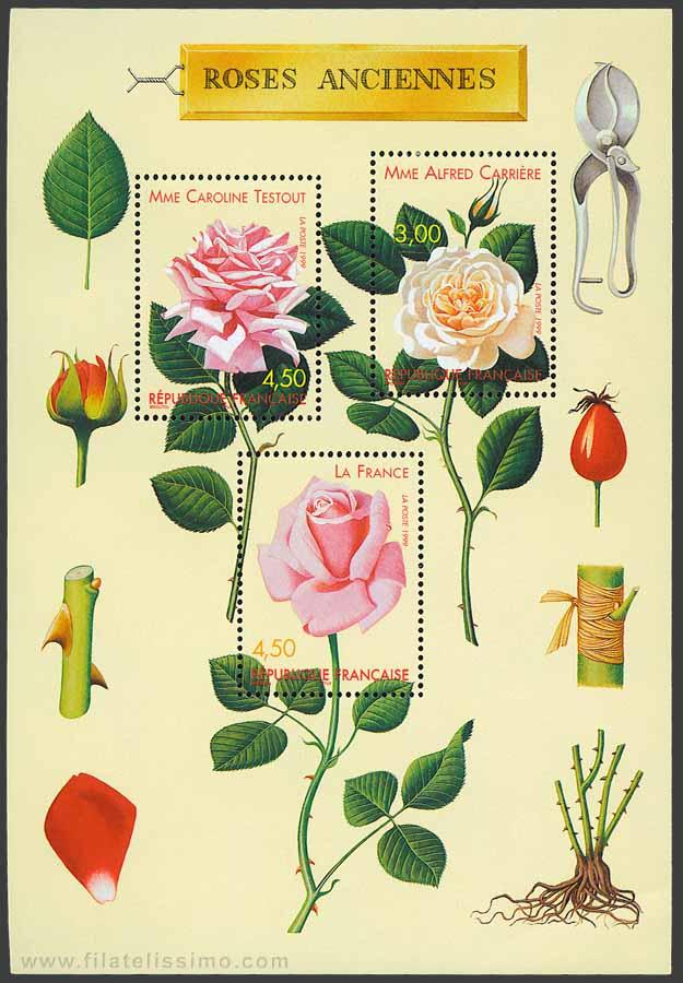 1999 Francia Rosas