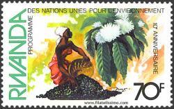 10º Aniversario PNMA. 70F