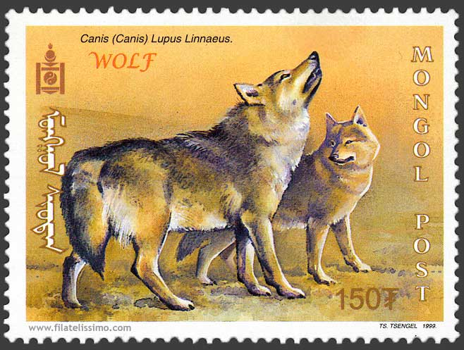 1999 Mongolia Lobo01