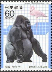 Gorila y Flamenco