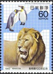 León y Pingüinos
