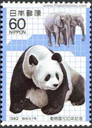 Oso Panda y Elefantes