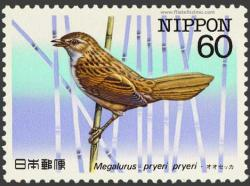 Megalurus pryeri pryeri