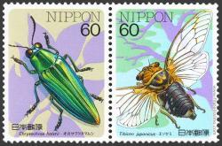 Chrysochroa holstii, Tibicen japonicus.