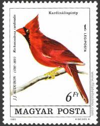 Richmondena cardinalis