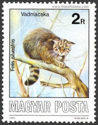 Fauna, Animales protegidos.