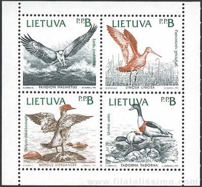 Fauna: Aves