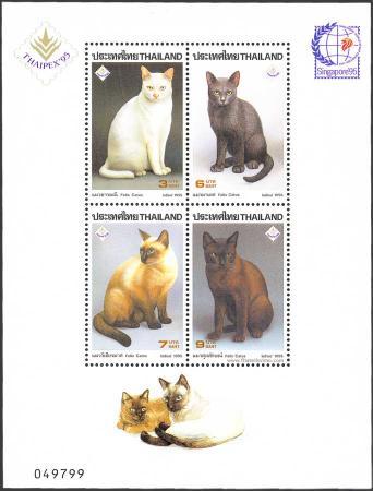 Razas de Gatos Tailandeses