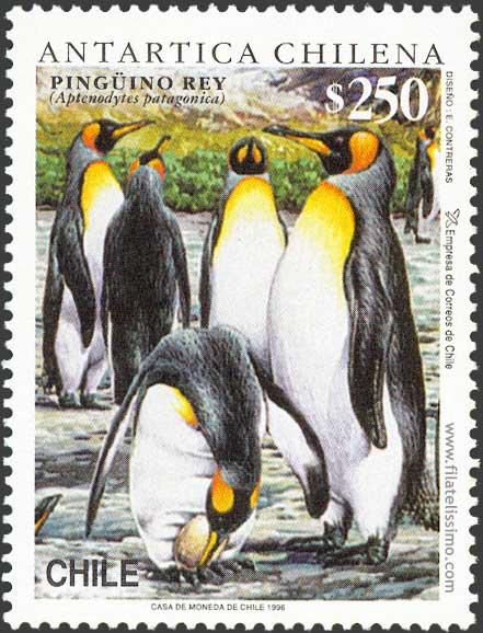 1996 Chi Pinguino Rey01
