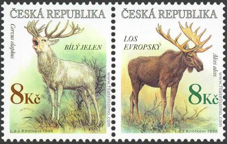 Fauna: Ciervos y Alces