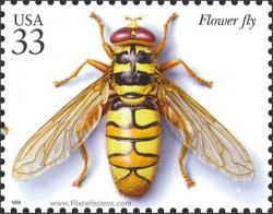 Fauna: Insectos y Arañas