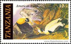 Fauna en peligro: John James Audubon
