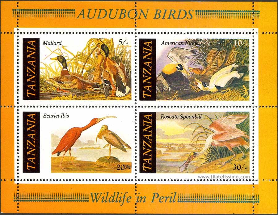 John Audubon Aves Hb