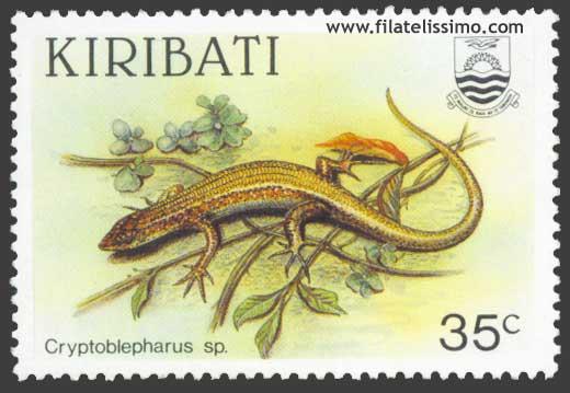 Reptiles Escindios Cryptoblepharus